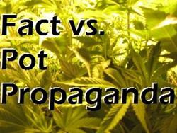 pot-propaganda350