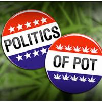 politics of pot